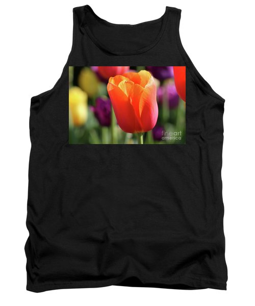 Orange Tulip In Franklin Park Tank Top