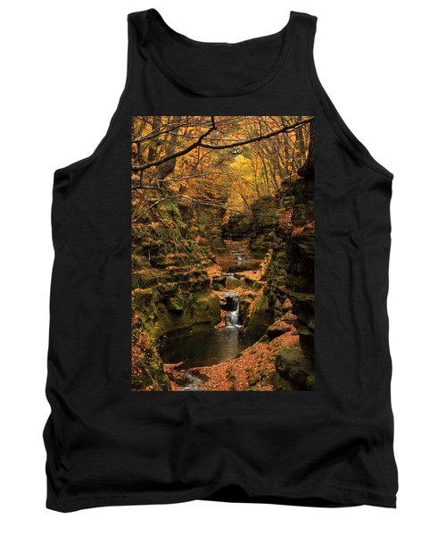 Pewit's Nest - Wisconsin Tank Top