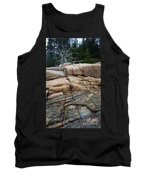 Pink Granite And Driftwood At Schoodic Peninsula In Maine  -4672 Tank Top