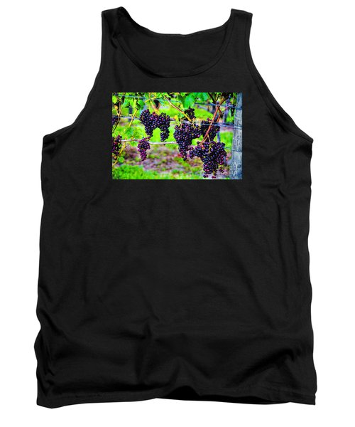 Pinot Noir Grapes Tank Top