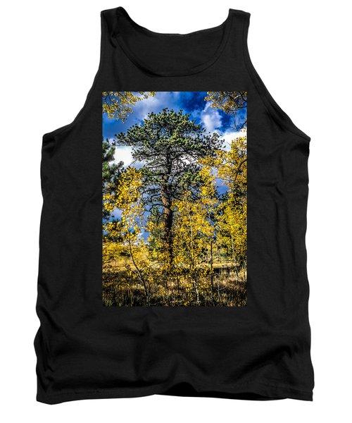 Ponderosa  Tree In The Aspens Of Fall Colorado Tank Top