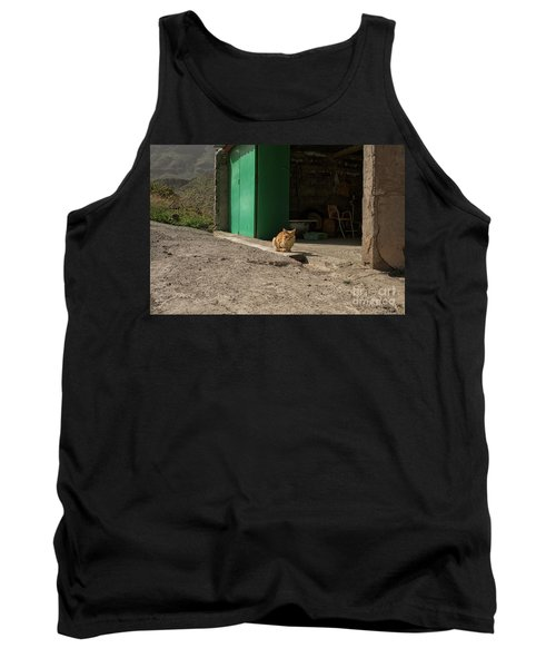 Red Cat And Green Shed Tank Top by Patricia Hofmeester