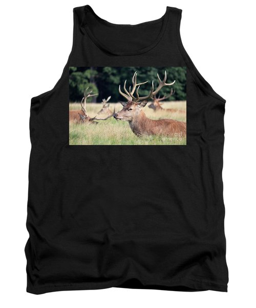 Red Deer Stags Richmond Park Tank Top