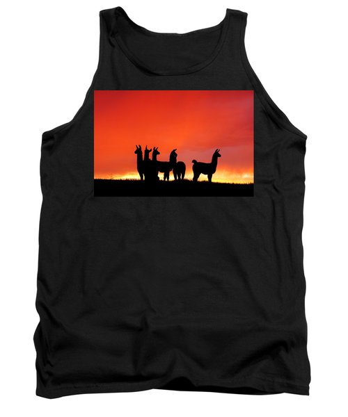 Red Llama Sunset 1 Tank Top