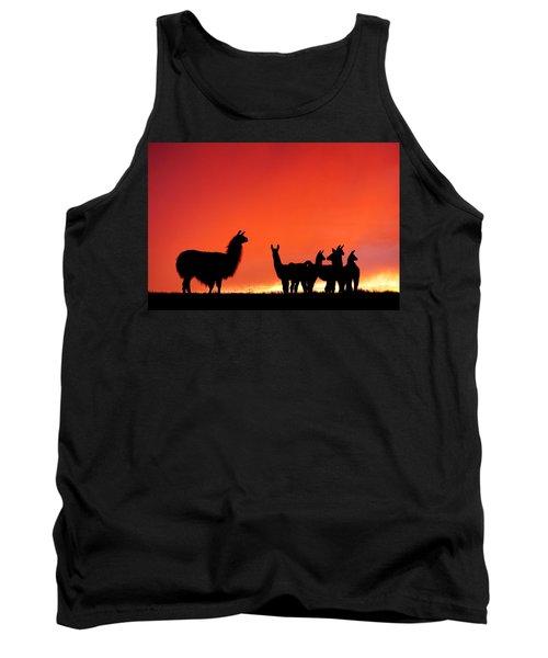 Red Llama Sunset 2 Tank Top