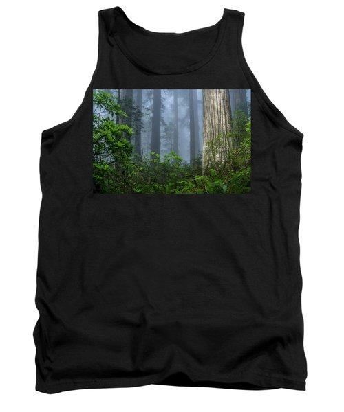 Redwoods In Blue Fog Tank Top