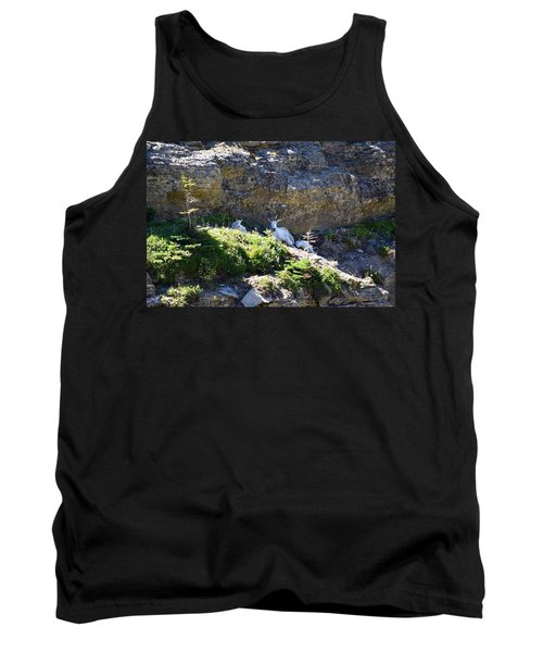 Tank Top featuring the photograph Relaxing In The Shade by Dacia Doroff