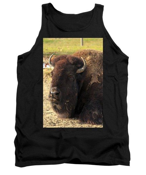 Resting Buffalo Tank Top