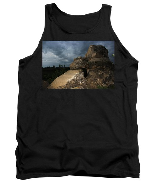 Roche Percee Peak Tank Top