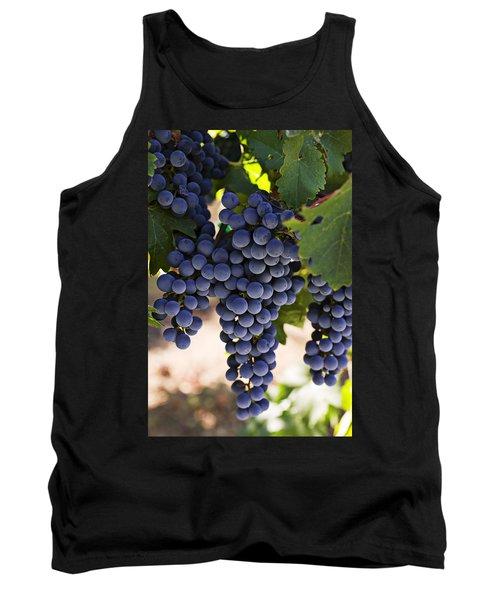 Sauvignon Grapes Tank Top