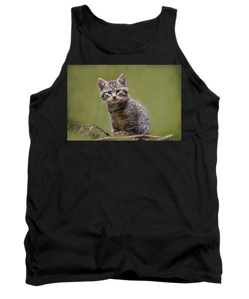 Scottish Wildcat Kitten Tank Top