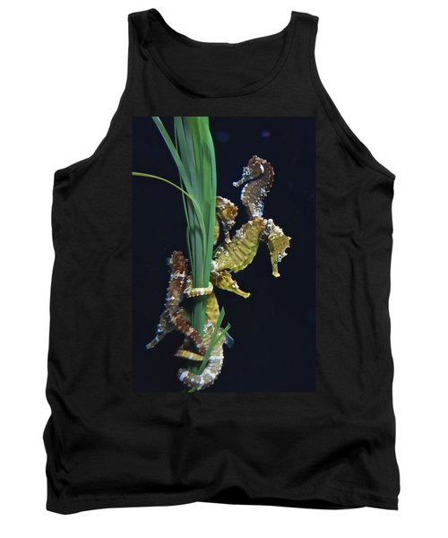 Tank Top featuring the photograph Sea Horse by Joan Reese