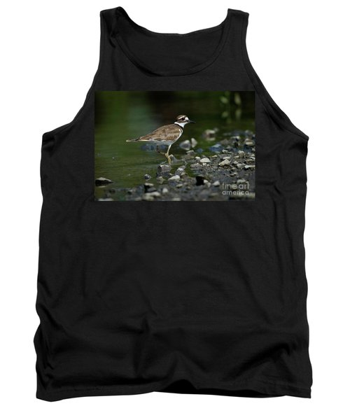 Killdeer  Tank Top by Douglas Stucky