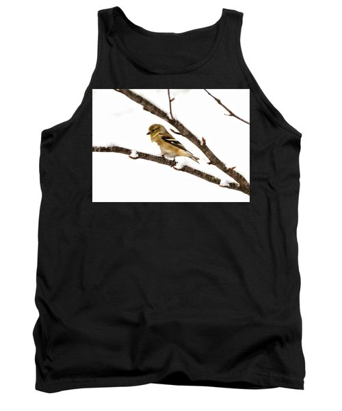 Snowy Day Goldfinch Tank Top