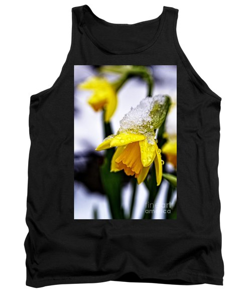 Spring Daffodil Flowers In Snow Tank Top