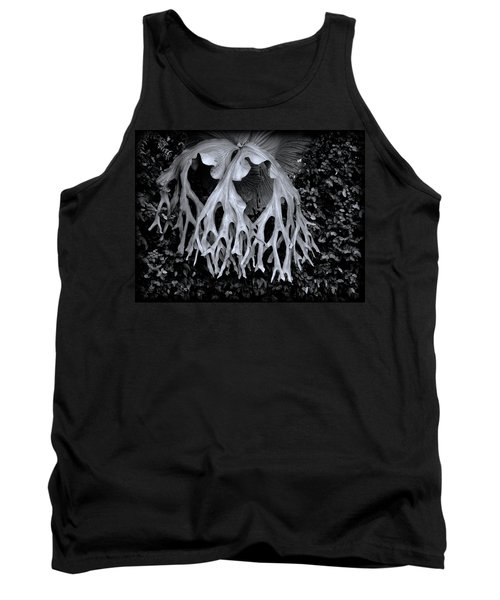 Tank Top featuring the photograph Staghorn Fern by Wayne Sherriff