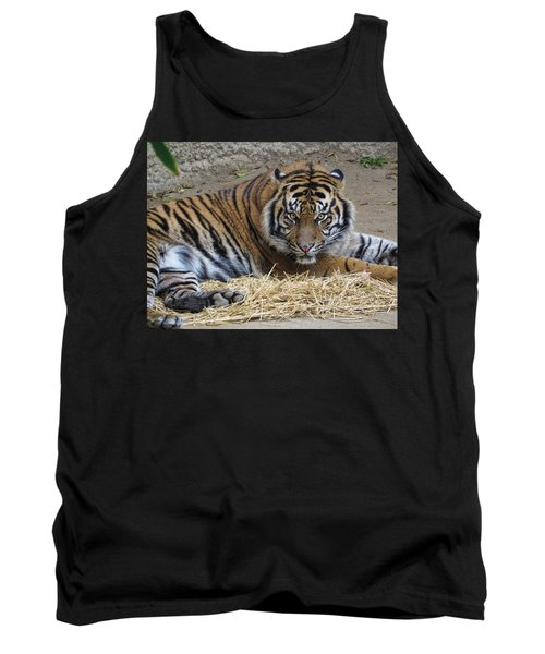 Staring Tiger Also Tank Top