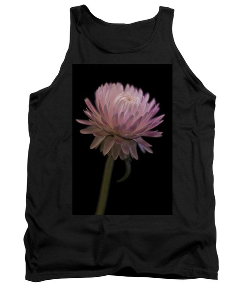 Straw Flower Tank Top by Sandra Foster