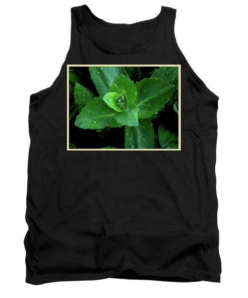 Succulent After The Rain  Tank Top