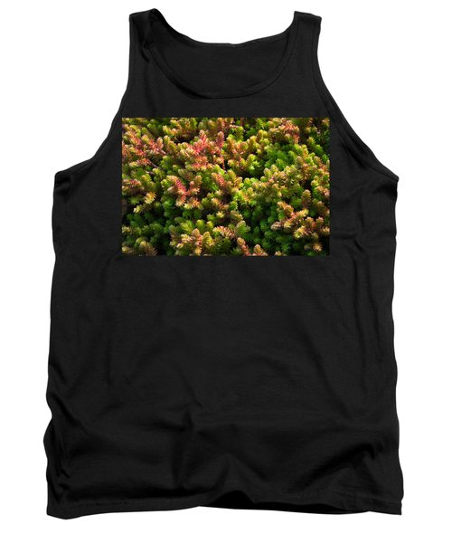 Succulents Tank Top by Catherine Lau