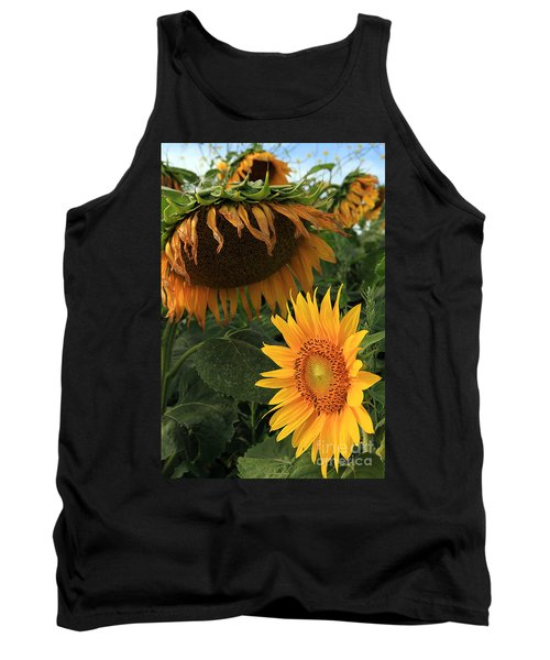 Sun Flowers  Past  And  Present  Tank Top by Paula Guttilla