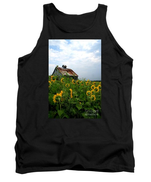 Sunflowers Along Rt 6 Tank Top