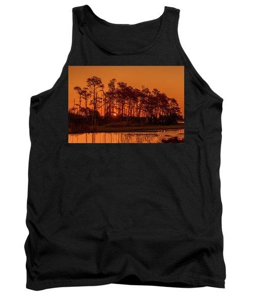 Sunrise Along A Tree Line Tank Top
