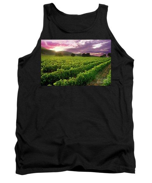 Sunset Over The Vineyard Tank Top