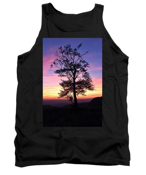 Sunset Tree Tank Top