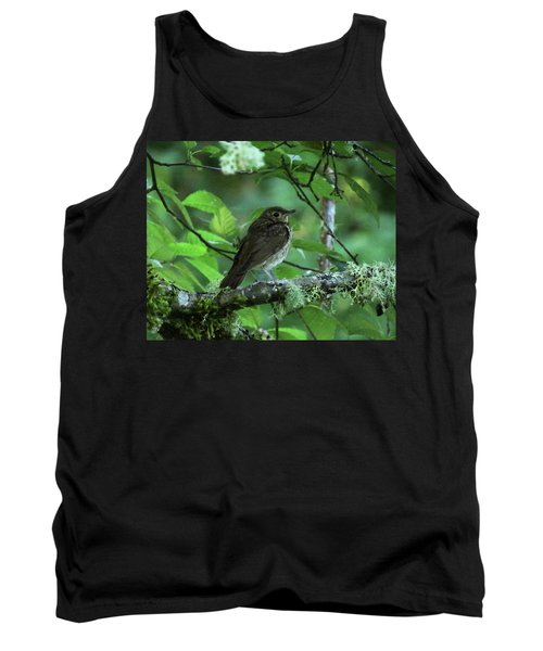 ..the Mysterious Thrush.. Tank Top