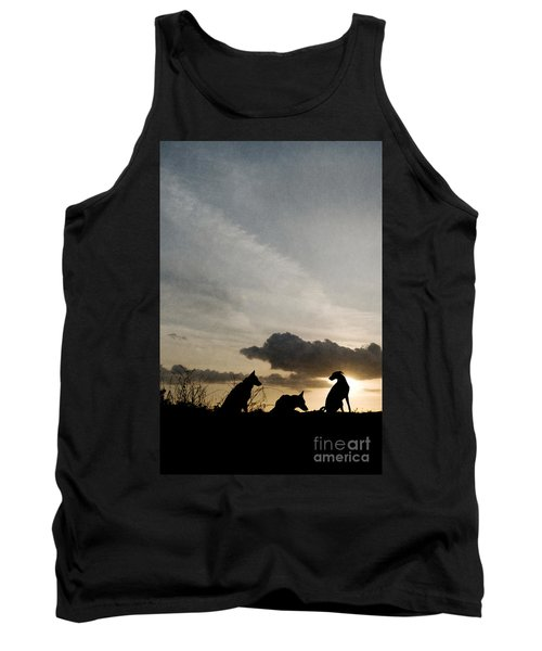 Three Dogs At Sunset Tank Top