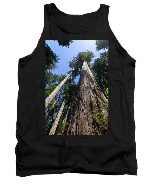 Towering Redwoods Tank Top