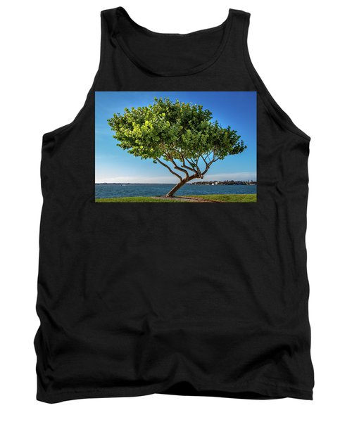Tree On The Bay Tank Top