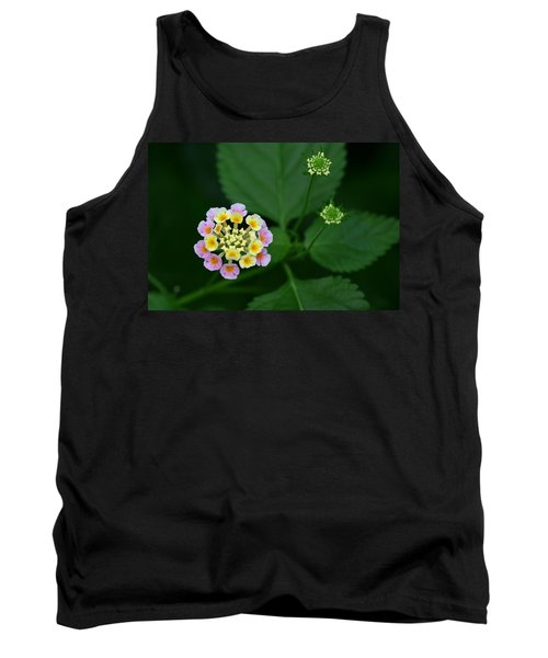 Tank Top featuring the photograph Waiting Their Turn by Shari Jardina