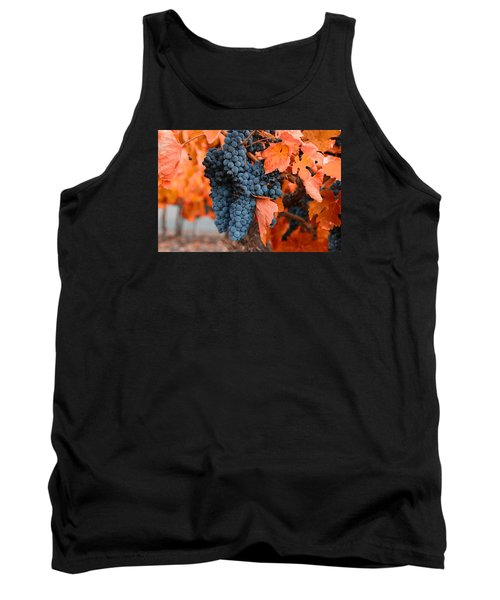 Tank Top featuring the photograph Walking Though The Vineyard by Lynn Hopwood
