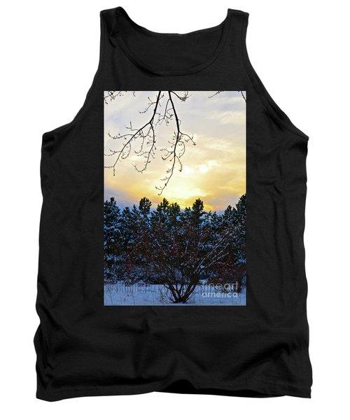 Winter Sunset On The Tree Farm #2 Tank Top