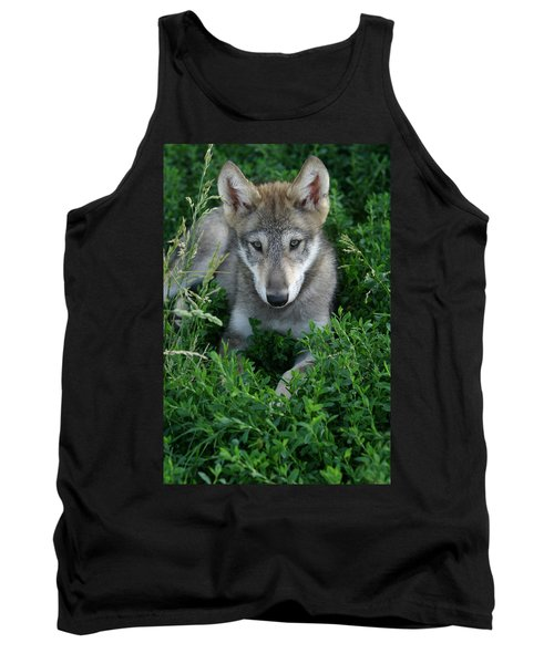 Tank Top featuring the photograph Wolf Pup Portrait by Shari Jardina