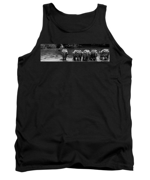 Zebras Cautiously Drinking Tank Top by Darcy Michaelchuk