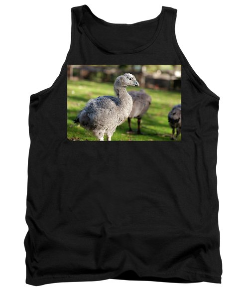 Cape Barren Goose And Geese Tank Top