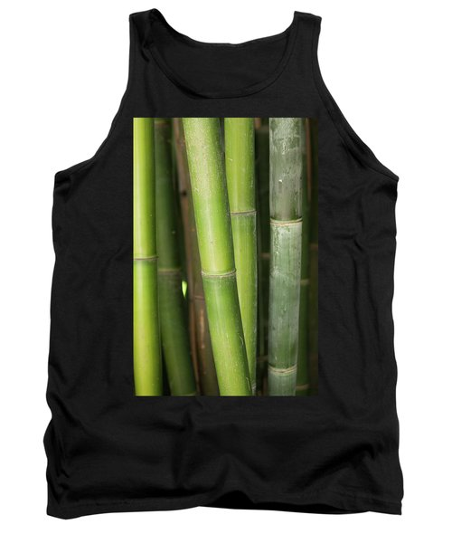 Bamboo Stalk 4057 Tank Top
