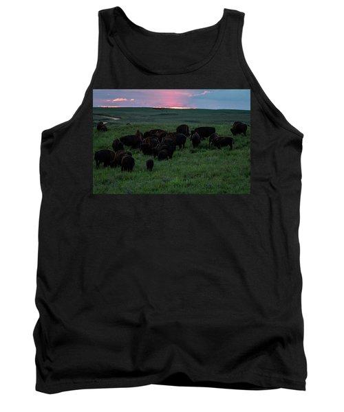 Bison At Sunset Tank Top