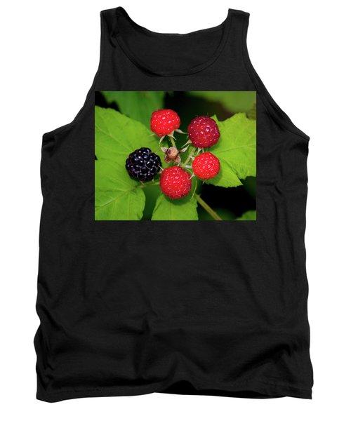 Blackberries Tank Top