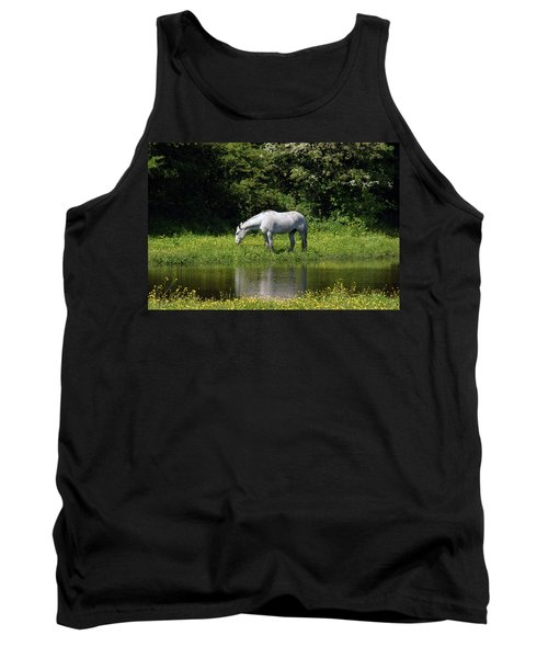 Cumbria. Ulverston. Horse By The Canal Tank Top