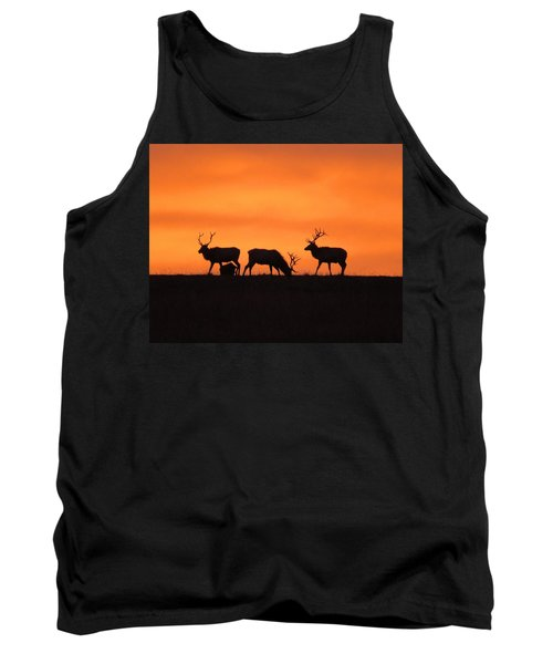 Elk In The Morning Light Tank Top