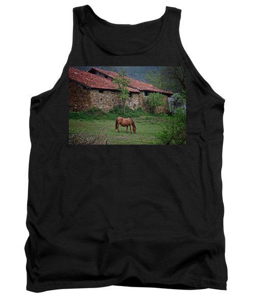Horse In The Field Next To A Rural House Tank Top