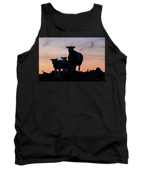 Tank Top featuring the photograph Sheep Family by Anjo Ten Kate