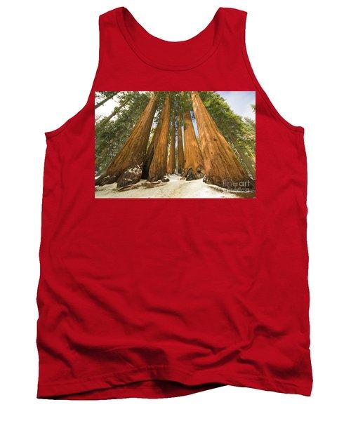 Giant Sequoias Sequoia N P Tank Top