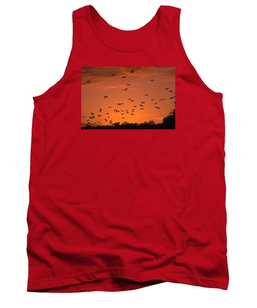 Birds At Sunset Tank Top
