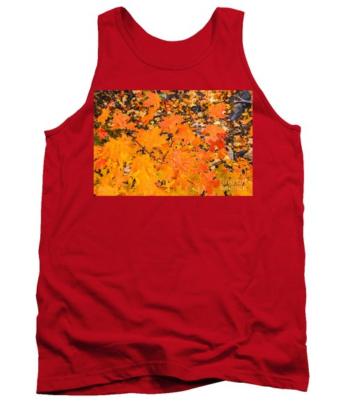 After The Rain Tank Top by Sue Smith