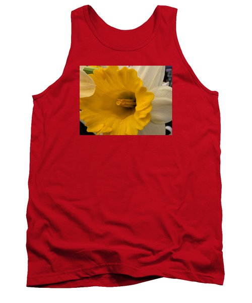 Easter 2014-3 Tank Top by Jeff Iverson